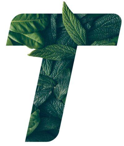 t-foglie